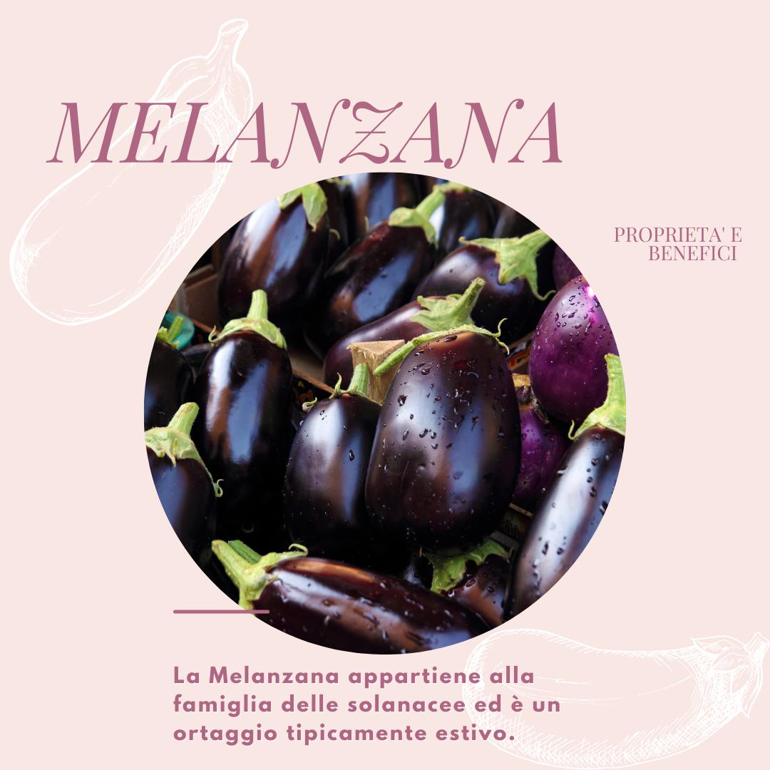 La-melanzana-qualità-benefici-i-vari-abbinamenti-e-come-cucinarla.I-consigli-B-Womanpng.png